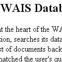How to Search a WAIS Database