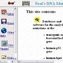 Neal's DNA Mutation Site