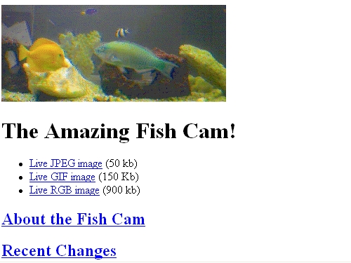 http://home.mcom.com/fishcam/