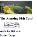 The Amazing Fish Cam!