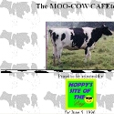 The MOO-COW CAFEteria
