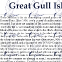 Great Gull Island