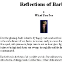 Reflections of Barbie
