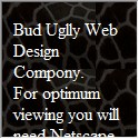 Bud Uglly Web Design